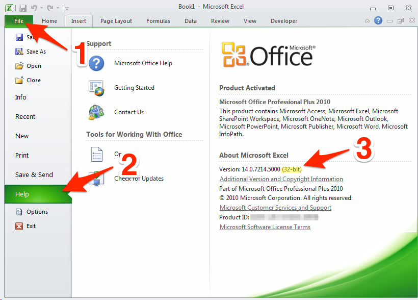 How to check which Excel 2010 version