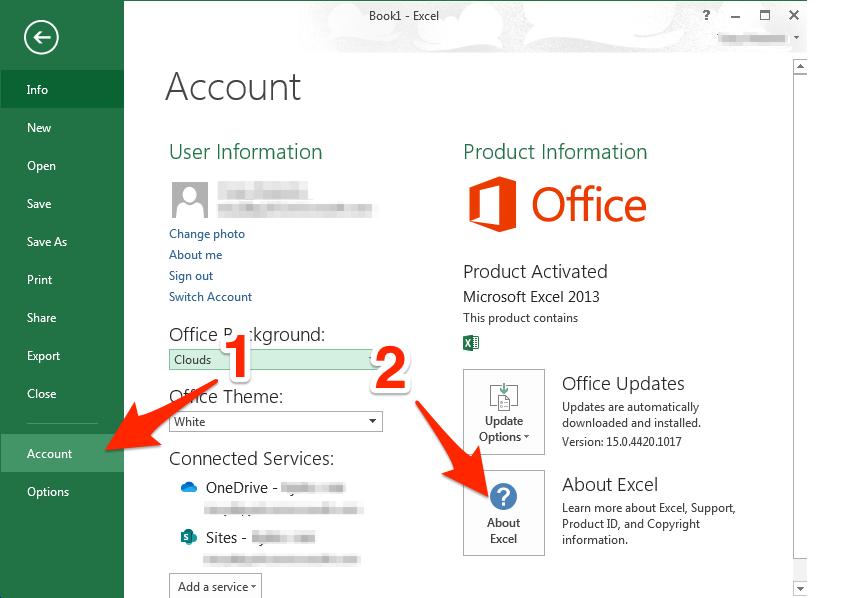 How to check which Excel 2013 version